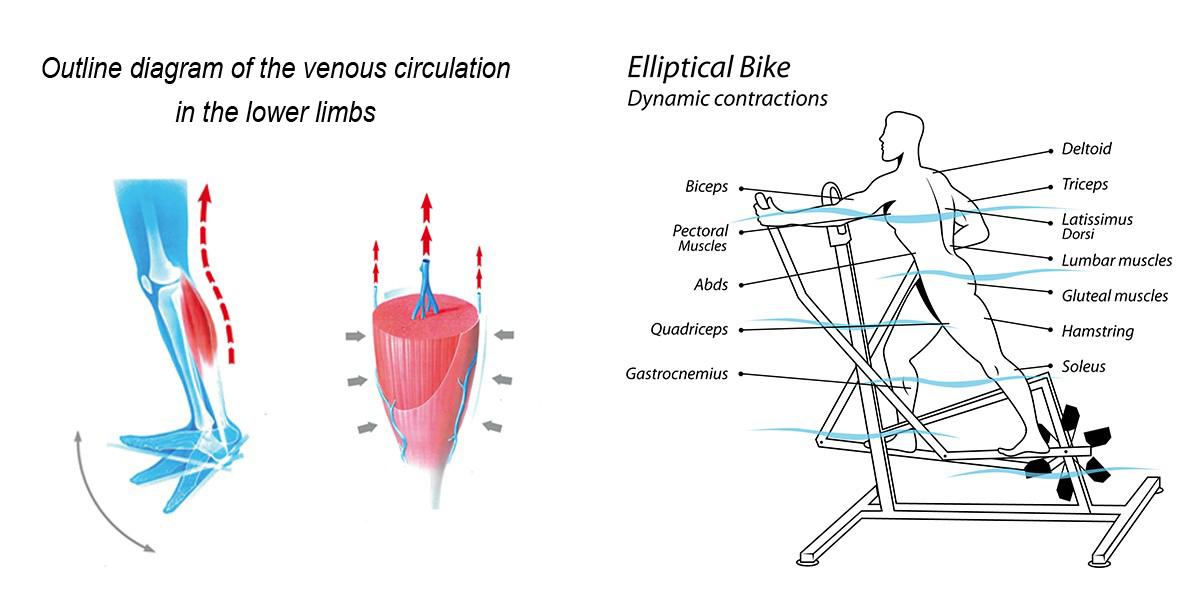 schema elliptical bike archimède/jointecfrance