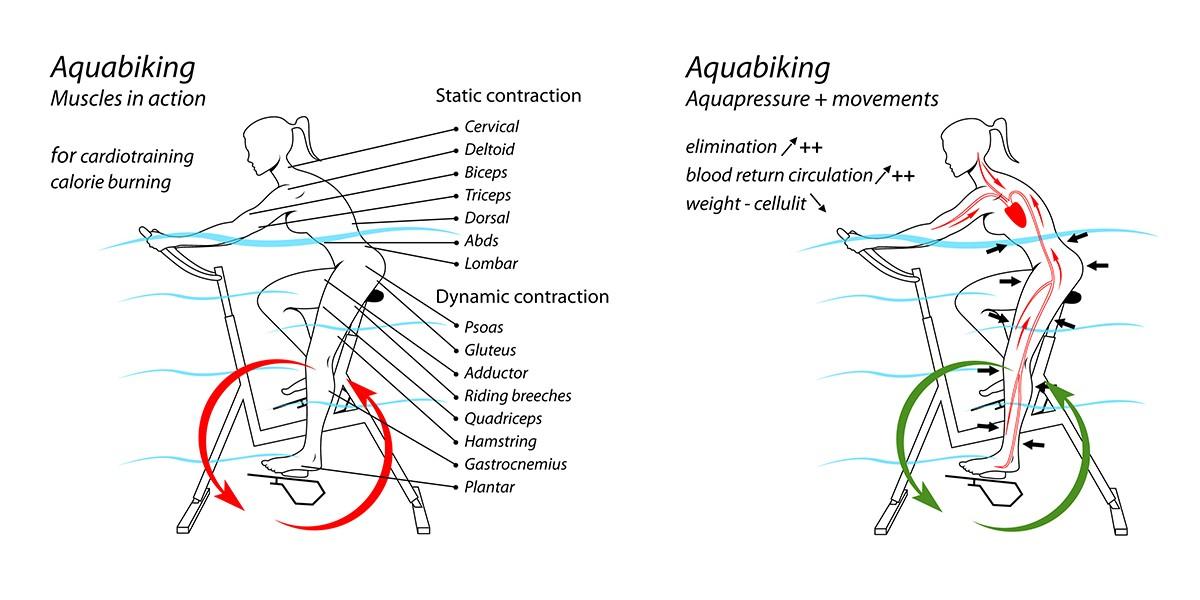 schema aquabike archimède/jointecfrance