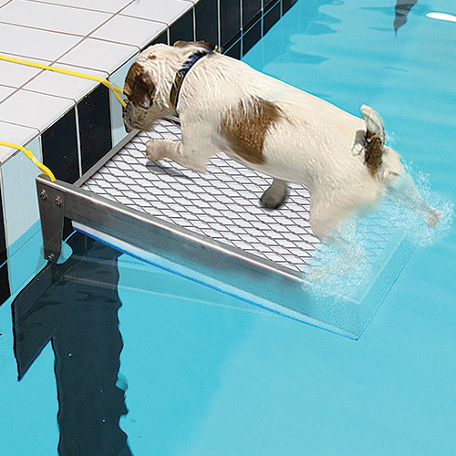 Ausstiegshilfe für Haustiere Archimede